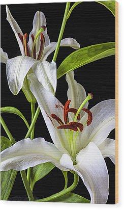 Two Wonderful Lilies  Wood Print by Garry Gay