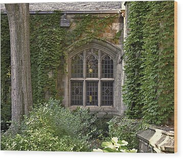 U Of M Halls Of Ivy Wood Print