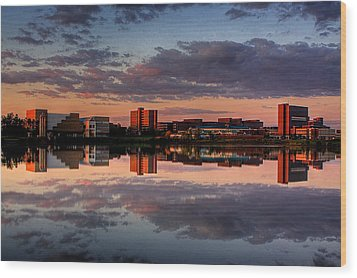 Wood Print featuring the photograph Ub Campus Across The Pond by Don Nieman