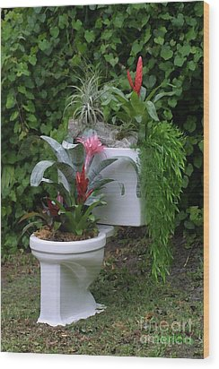 Ultimate Flower Pot Wood Print
