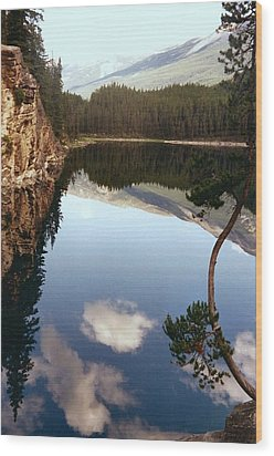 Ultimate Reflection Wood Print by Shirley Sirois