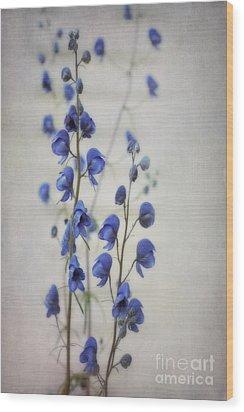 Ultramarine  Wood Print by Priska Wettstein