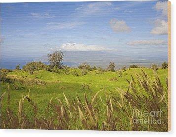 Ulupalakua Landscape Wood Print by Ron Dahlquist - Printscapes