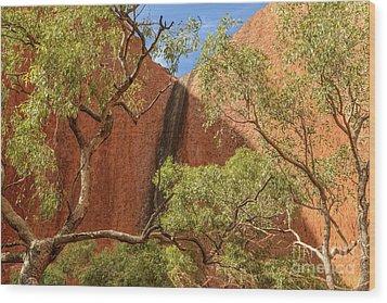 Wood Print featuring the photograph Uluru 02 by Werner Padarin