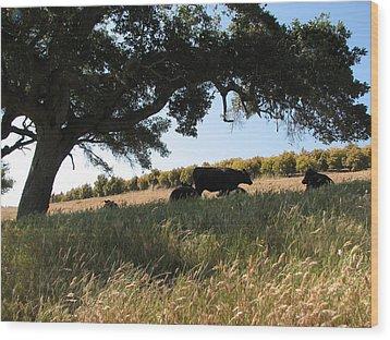Under The Oak Tree Wood Print
