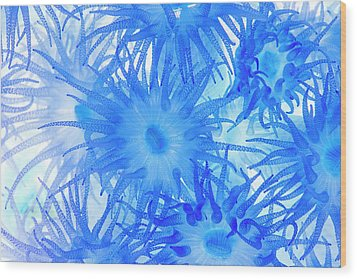 Wood Print featuring the photograph Under The Sea Colorful Watercolor Art #14 by Debra and Dave Vanderlaan
