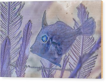 Wood Print featuring the photograph Under The Sea Colorful Watercolor Art #8 by Debra and Dave Vanderlaan