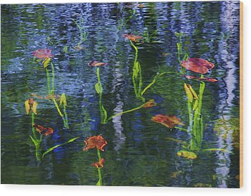 Wood Print featuring the photograph Underwater Lilies by Sean Sarsfield