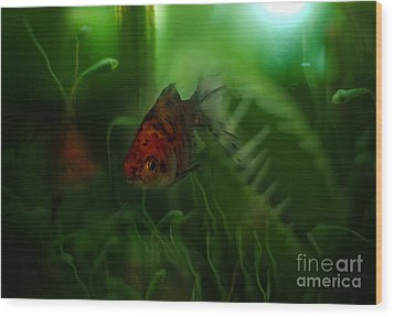 Underwater World Wood Print by Angel  Tarantella