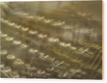 Underwood Abstract Wood Print by Irwin Seidman
