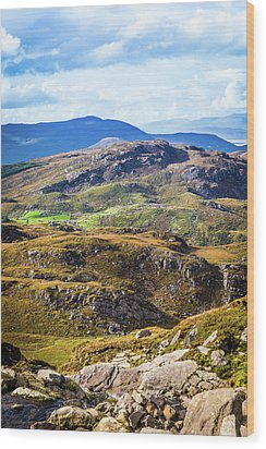 Undulating Green, Purple And Yellow Rocky Landscape In  Ireland Wood Print by Semmick Photo