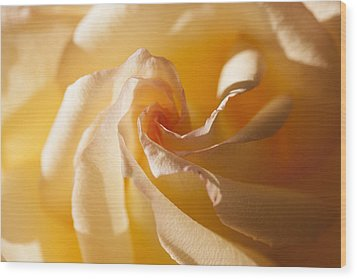 Wood Print featuring the photograph Unfurling by Christina Lihani