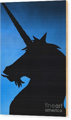 Wood Print featuring the photograph Unicorn by Craig B