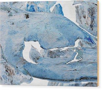 Unidentified Aquatic Object Wood Print