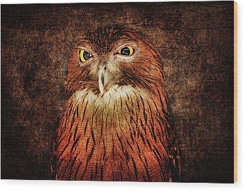 Unimpressed Wood Print by Andrew Paranavitana