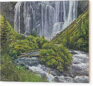 Union Falls Wood Print by Steve Spencer