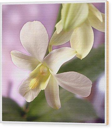 Unique White Orchid Wood Print by Mike McGlothlen