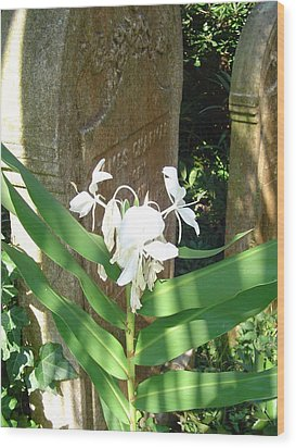 Unitarian Church Cemetery Wood Print by Richard Marcus
