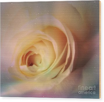 Wood Print featuring the photograph Universal Rose by Kristine Nora