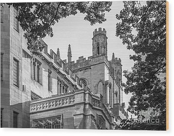 University Of Chicago Collegiate Architecture Wood Print by University Icons