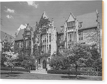 University Of Chicago Eckhart Hall Wood Print by University Icons
