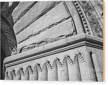 University Of Minnesota Pillsbury Hall Detail Wood Print