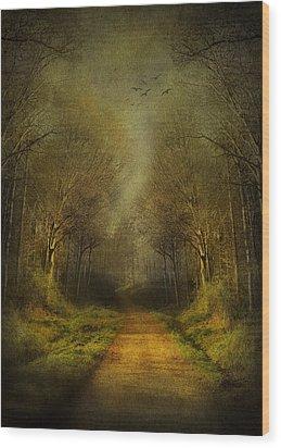 Unknown Footpath Wood Print by Svetlana Sewell