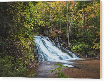 Unnamed Morgan Falls Wood Print