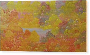 Untitled 53 Wood Print by David Snider