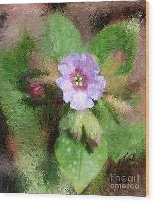 Untitled Floral -1 Wood Print by David Lane