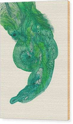 Untitled - #ss14dw040 Wood Print by Satomi Sugimoto