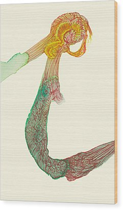 Untitled - #ss14dw046 Wood Print by Satomi Sugimoto