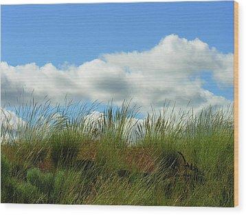 Up A Hill Wood Print by Bonnie Bruno