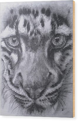 Up Close Clouded Leopard Wood Print by Barbara Keith