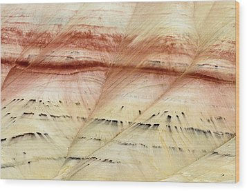 Up Close Painted Hills Wood Print by Greg Nyquist