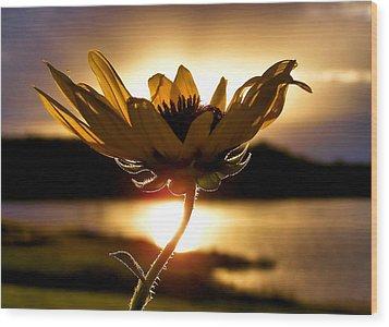 Uplifting Wood Print by Karen Scovill