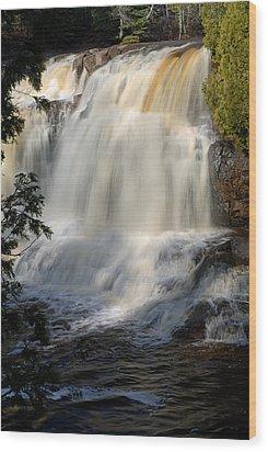 Upper Falls Gooseberry River 2 Wood Print by Larry Ricker