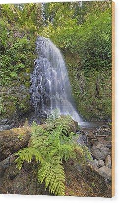 Upper Mccord Creek Falls Wood Print by David Gn