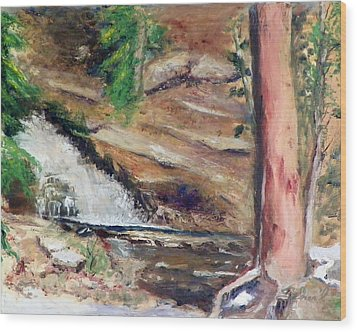 Upper Provo River Falls Wood Print