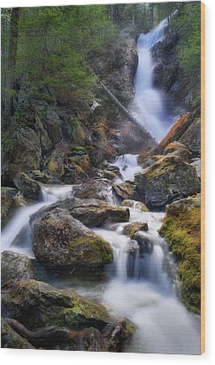 Wood Print featuring the photograph Upper Race Brook Falls 2017 by Bill Wakeley