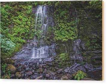Upper Terrace Falls Wood Print by Joe Hudspeth