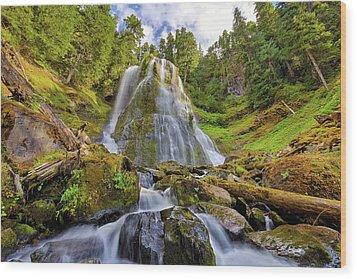 Upper Tier Of Falls Creek Falls In Summer Wood Print by David Gn
