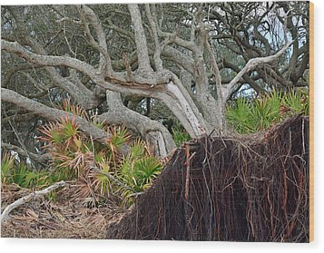 Uprooted Wood Print by Bruce Gourley