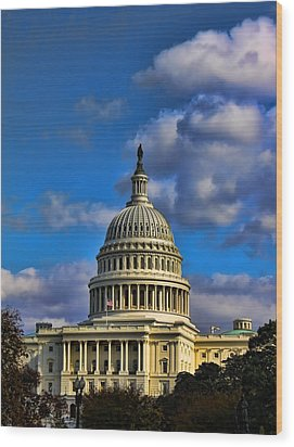 Us Capital  Wood Print by Brian Governale