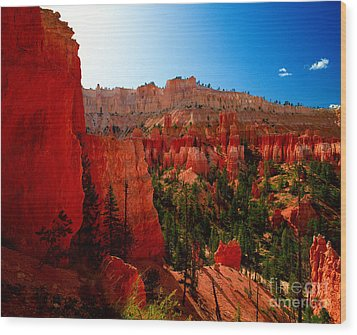 Utah - Navajo Loop Wood Print by Terry Elniski