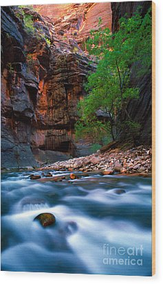 Utah - Virgin River 4 Wood Print