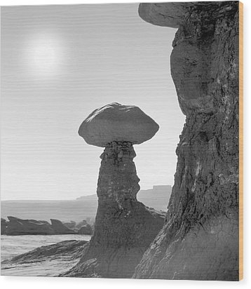 Utah Outback 19 Wood Print by Mike McGlothlen