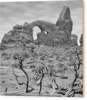 Utah Outback 37 Wood Print by Mike McGlothlen