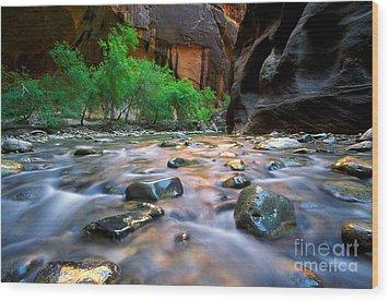 Utah - Virgin River 5 Wood Print by Terry Elniski