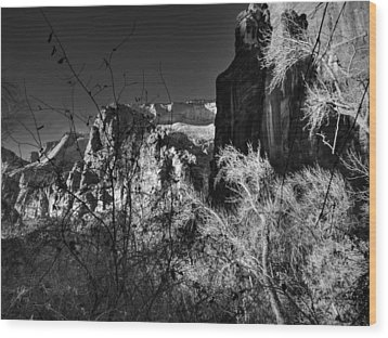 Utah - Zion National Park 003 Bw Wood Print